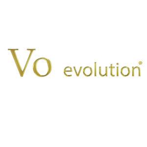 VO Evolution